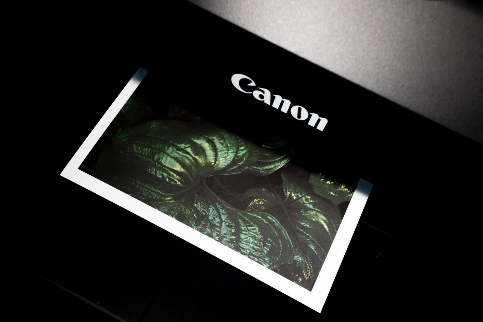 A photo of leaves being input into a black Canon scanner