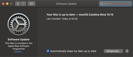 """A screenshot of the Software Update settings on macOS with the message, """"Your Mac is up to date""""."""