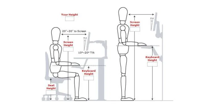 A diagram of the optimal sitting and standing posture when using a keyboard and monitor.