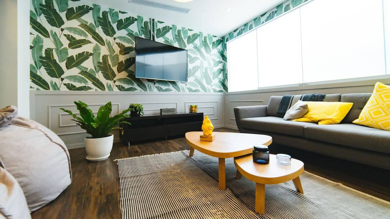 A living room with a coffee table, a fern, a smart tv mounted on the wall and a couch. All with nice natural light lighting the room