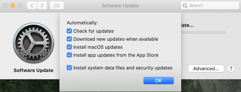 A screenshot of macOS, software update settings.