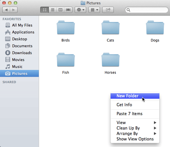 "A screenshot of the Pictures folder on a Mac and by right-clicking you can select ""New Folder"" and create"